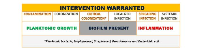 How to Identify Biofilms in Wounds | WoundSource