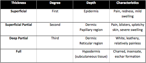 Deep Partial-Thickness (Deep Second-Degree) Burns