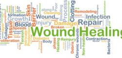 wound healing and wound bed preparation