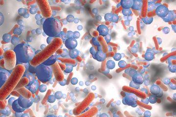 Multidrug-Resistant Organisms