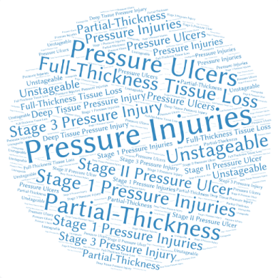 pressure ulcer terminology