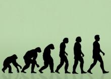Evolution of the wound care specialist