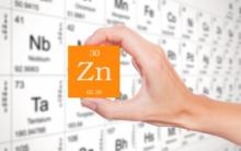 Zinc in wound healing