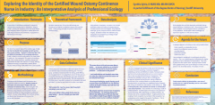 Exploring the Identity of the Certified Ostomy Continence Nurse in Industry